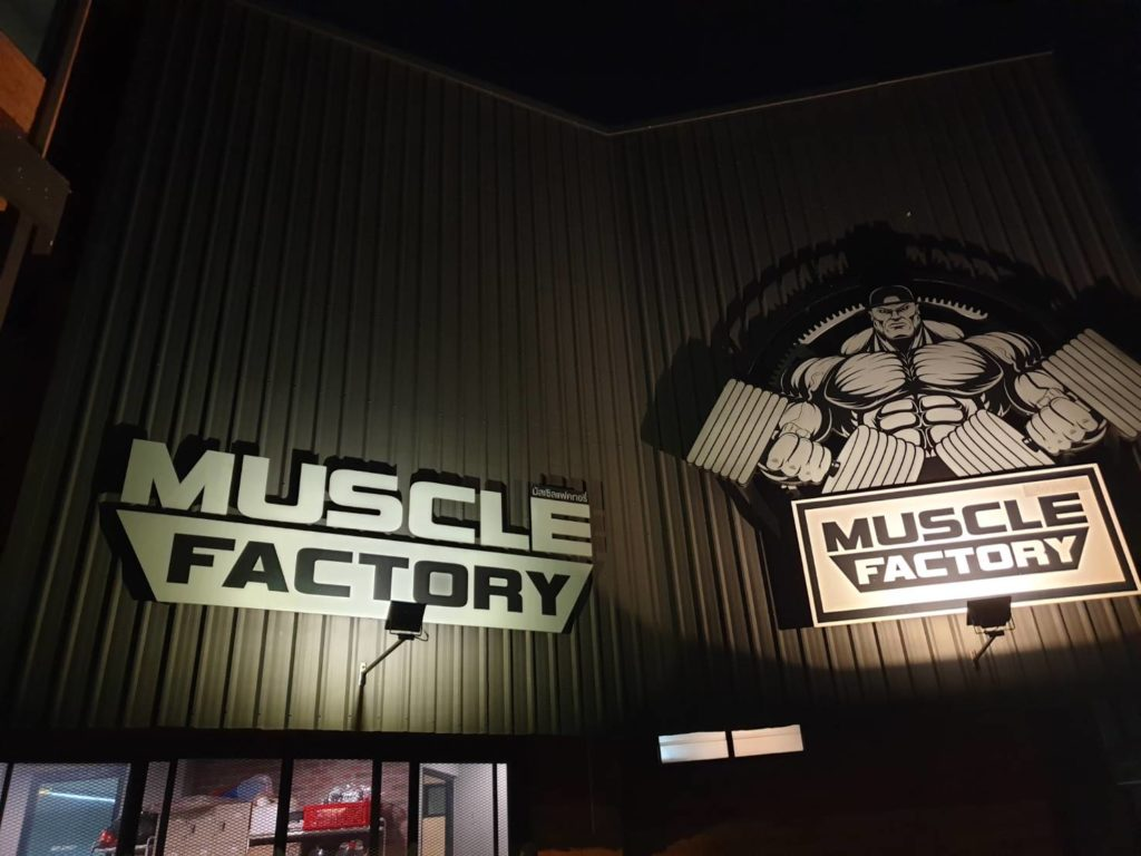 MUSCLE FACTRY