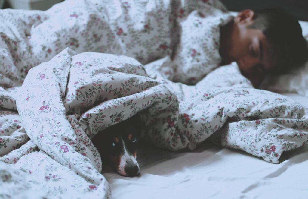 寝ている男性と犬
